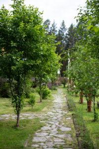 Фото турбаза царство света